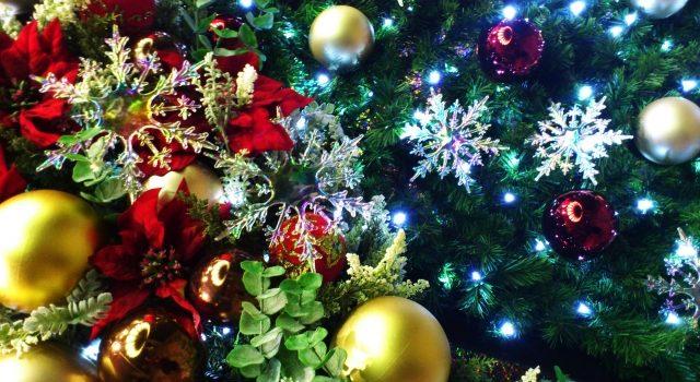 女性目線!クリスマスの過ごし方!