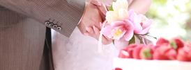 会員様の婚活サポート状況